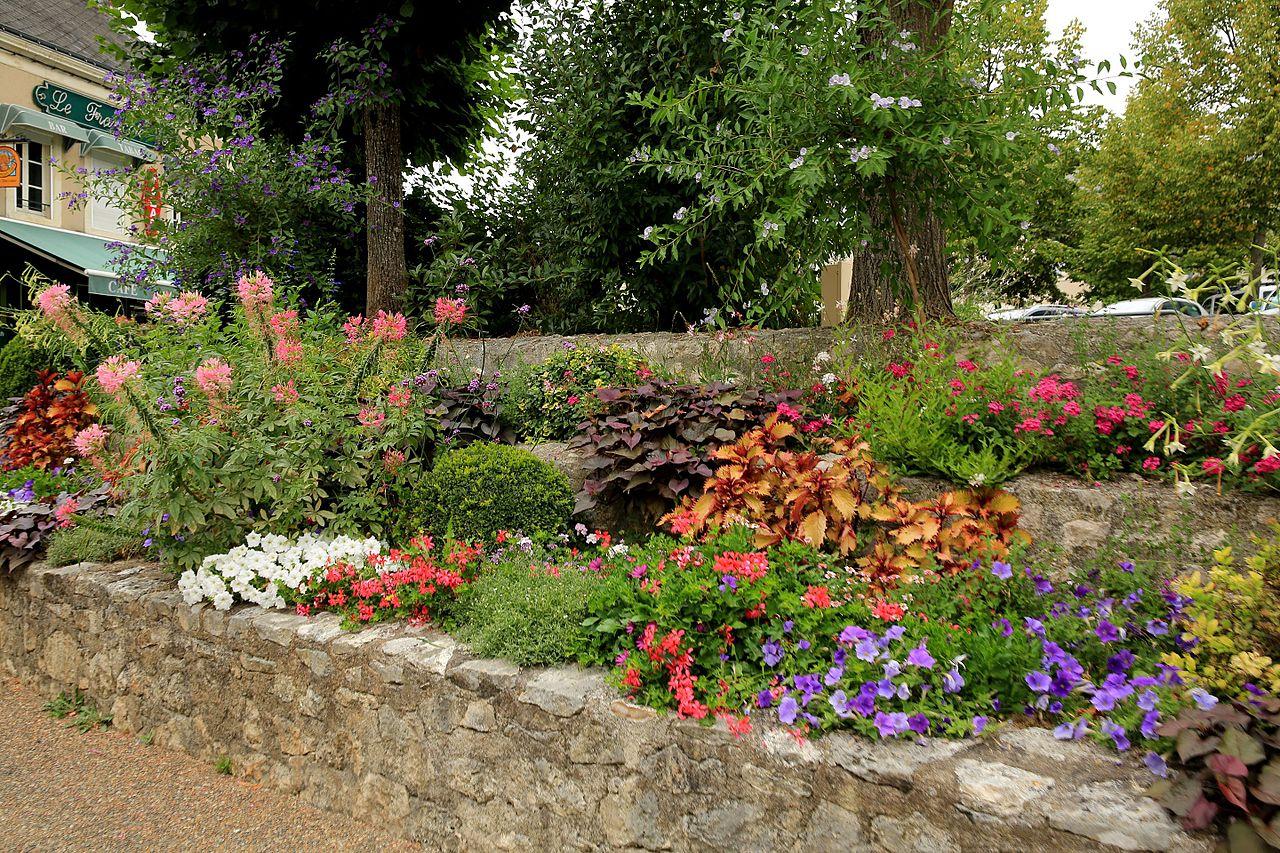 A faire au jardin en mai-Jardin d\'ornement